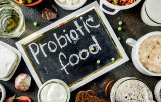 prebioticos-y-probioticos